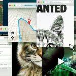 【番組レビュー】『猫イジメに断固NO!: 虐待動画の犯人を追え』